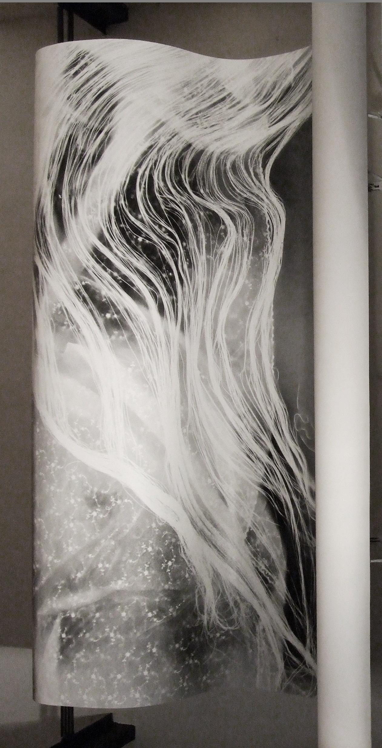 shell, disegno con polvere di grafite su carta,180x160 2010